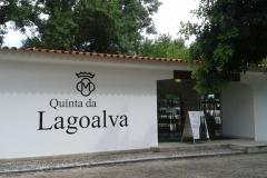 lagoalva6
